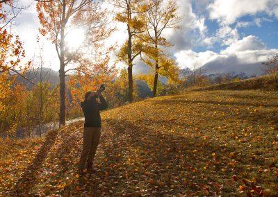 l_automne_72dpi